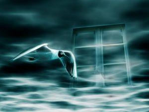 Scheinwelten, Illusion, Täuschung