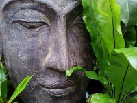 buddha, gelassenheit, vertrauen